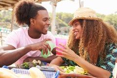 Barnpar som utomhus tycker om lunch tillsammans royaltyfri bild