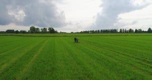 Barnparspring i ultrarapid Flyg- längd i fot räknat tecknad film fields grön illustrationstil lager videofilmer