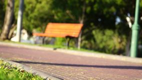 Barnpojke på en cykel i skogen i sommar Pojke som utomhus cyklar i säkerhet arkivfilmer