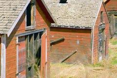 Barns 3. Closeup of a group of barns Royalty Free Stock Photos