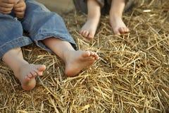 Barns fot i höet arkivbilder