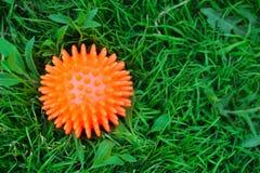 Barns leksaker på gräset Royaltyfria Foton
