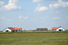 Barns on the meadow Royalty Free Stock Photography