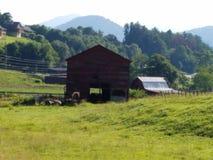 Barns in North Carolina royalty free stock photo