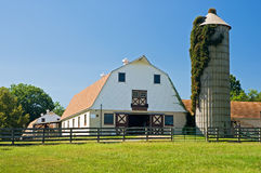 Barns and silo on dairy farm. A view of a classic country barns and ivy-covered silo on a small dairy farm.  Classic Gambrel style barn Stock Images