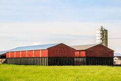 Barns and silo tower Stock Images