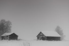 Barns In Snow Storm. The heavy snow fall covers the barn houses in the fields. The whole scenery is almost white royalty free stock photos