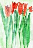 Barns teckning av röda Tulip Flowers, vattenfärg Arkivfoton