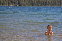 Barnsimning i Tenaya sj?n, Yosemite nationalpark arkivbilder