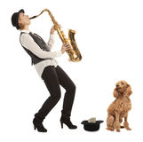 Barnstormer. Busker Musician woman with a dog earns money playing the saxophone Royalty Free Stock Photo