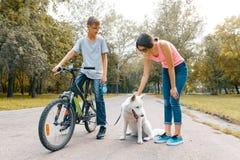 Barntonåringar på vägen i parkerar med den vita hunden som är skrovlig med cykeln som talar som ler royaltyfri foto