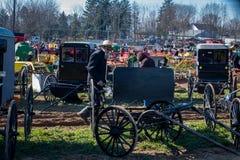 Barnvagnar på gyttja Sale Royaltyfri Bild