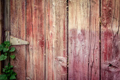 Barnwood. Detail shot of barn wood.  Humboldt County, California Stock Photos