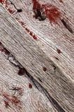 Barnwood texture,lumber,background Royalty Free Stock Photography