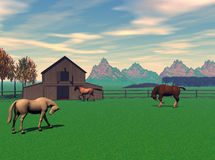 Barnyad Scene. Computer generated scene of horses frolicing in the barnyard Stock Photo