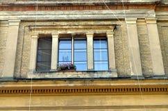 Barok venster met installaties vooraan stock afbeeldingen