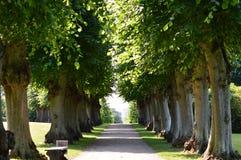 Baroku ogród - Frederiksborg pałac Obrazy Royalty Free