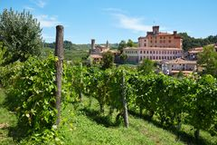 Barolo medieval castle and vineyards in Piedmont, Italy. BAROLO, ITALY - AUGUST 6: Barolo medieval castle and vineyards in Piedmont on Langhe hills on August 6 royalty free stock images