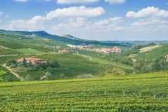 Barolo,Piedmont,Italy stock photo