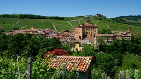Barolo Stock Photography