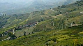 Barolo vineyards Stock Image