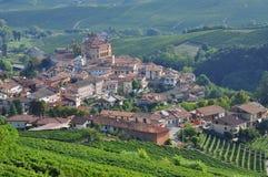 Barolo, vingård och kullar av den Langhe regionen Piemonte Italien arkivfoto