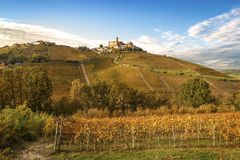 Barolo wine region, Langhe, Piedmont, Italy royalty free stock photo