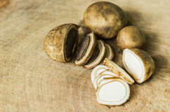 Barometer Earthstars Stock Photo