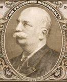 Baron van Rio Branco Stock Foto