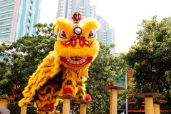 Barongsai or Dragon Dance Stock Photos