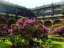 Baroque cloister courtyard in Santiago de Compostela, Spain. Flowering trees in spring bloom Stock Images