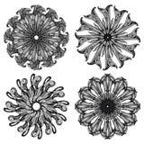 Baroque_pattern02 Imagens de Stock Royalty Free