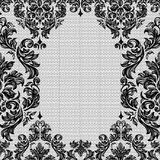 Baroque seamless vintage lace background Royalty Free Stock Images