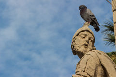 The baroque statue with pigeon Stock Images