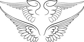 Baroque Wings in Calligraphy. Style. Vector Illustration Stock Photo