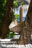 Baros un paraíso de Maledivian foto de archivo
