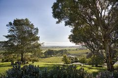 The Barossa Valley. Wine growing region of South Australia, the Barossa Valley Stock Image