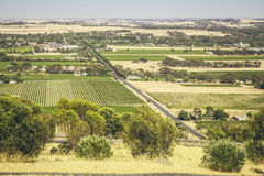 Barossa Valley. An image of the Barossa Valley landscape in Australia Stock Photo