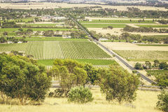 Barossa Valley. An image of the Barossa Valley landscape in Australia Stock Photos