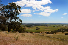 Barossa Valley Australia Royalty Free Stock Photos
