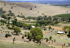 Barossa Valley Summer Landscape Royalty Free Stock Photos