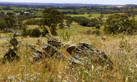 Barossa Valley Viewpoint Stock Images