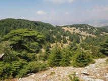 Barouk Imagens de Stock