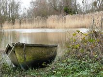 Barque in a reed bed near the edge of the Loire. France royalty free stock image