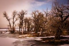 barr湖公园状态 免版税库存图片