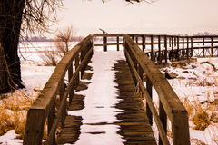 barr κράτος πάρκων λιμνών Στοκ Εικόνες