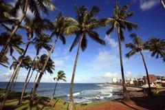 Barra beach  salvador of bahia Royalty Free Stock Photo