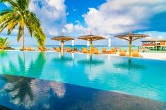 Barra da piscina na ilha tropical de Maldivas Fotos de Stock Royalty Free
