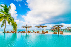 Barra da piscina na ilha tropical de Maldivas Imagens de Stock Royalty Free