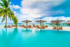 Barra da piscina na ilha tropical de Maldivas Fotografia de Stock